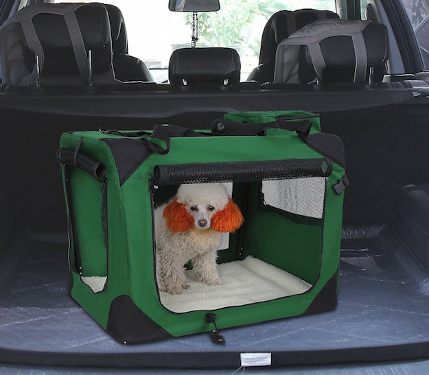 Trasportare cani in auto la tua auto for Amazon trasportini per cani